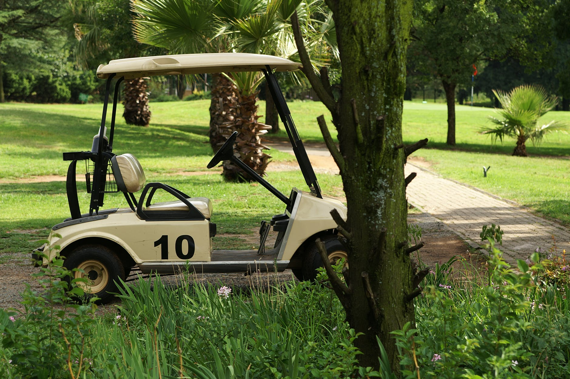 10 Best Golf Cart Batteries and Chargers Reviewed in 2019