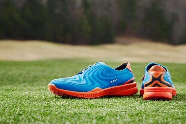an in-depth review of the best ECCO golf shoes of 2018.