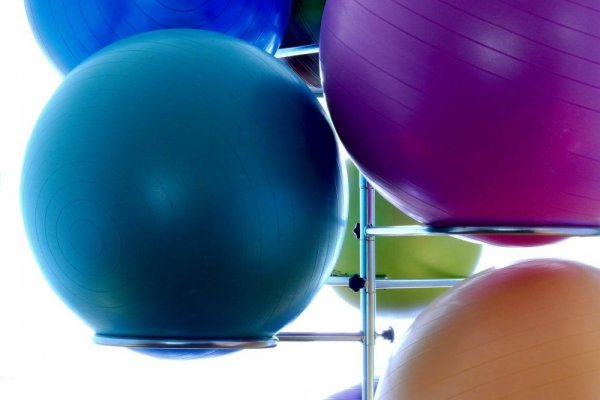 an in-depth review of the best Exercise balls of 2018.