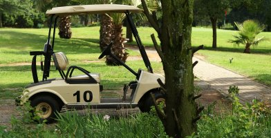 an in-depth review of the best golf cart batteries & chargers of 2018