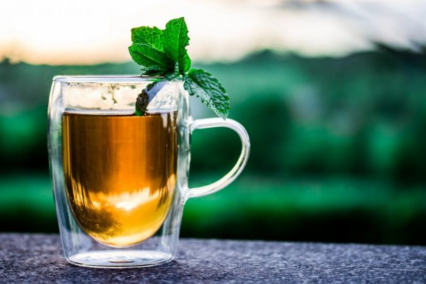an in-depth review of the best green teas of 2018.