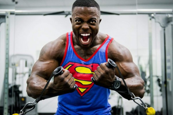 an in-depth review of the best weight gainers of 2018